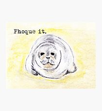 Phoque It Seal Pup Photographic Print