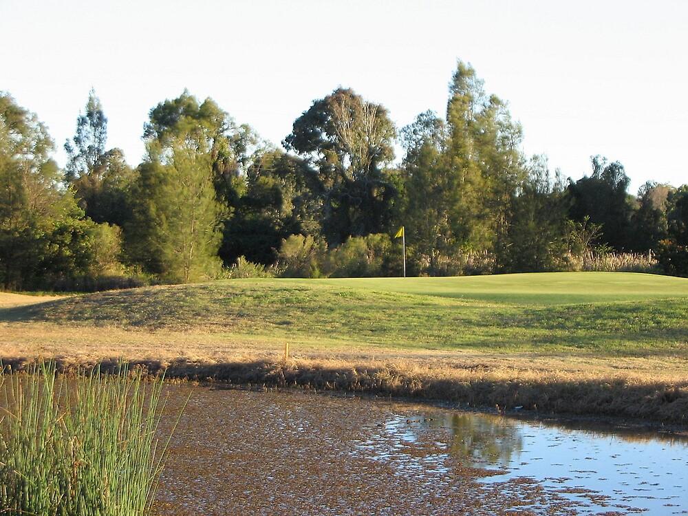 Corinda Golf Course by Alfer