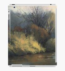 February on the Sugar River iPad Case/Skin