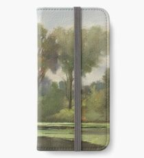 Lake Leota on a Cloudy Day iPhone Wallet/Case/Skin