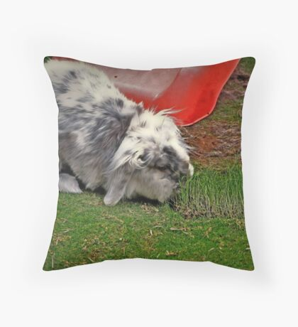 The luscious strip Throw Pillow