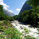 fiordland national park  by kevin smith  skystudiohawaii