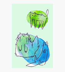 Goofy Watercolor Cats Photographic Print