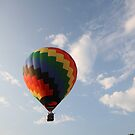 Hot Air Balloon by Michelle Callahan