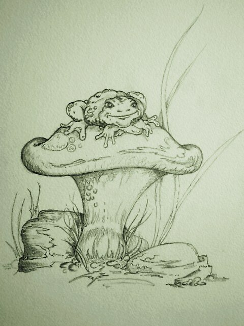 toad stool... by christophe71