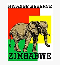 Hwange Reserve Photographic Print