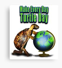 Turtle Day Canvas Print