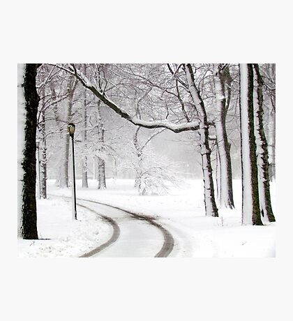 Snowy morning in Bronx, New York City  Photographic Print