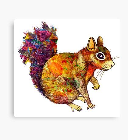 Squirrel Art Canvas Print