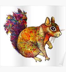 Squirrel Art Poster
