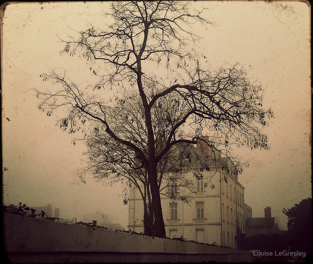 { in the fog } by Louise LeGresley