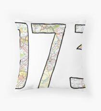 973 Throw Pillow