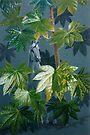 In my garden. by Heidi Schwandt Garner