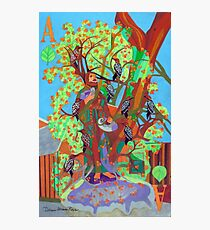 Apogee of an Apricot Tree Photographic Print