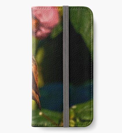 Kolibri in blühendem Ahornbaum iPhone Flip-Case