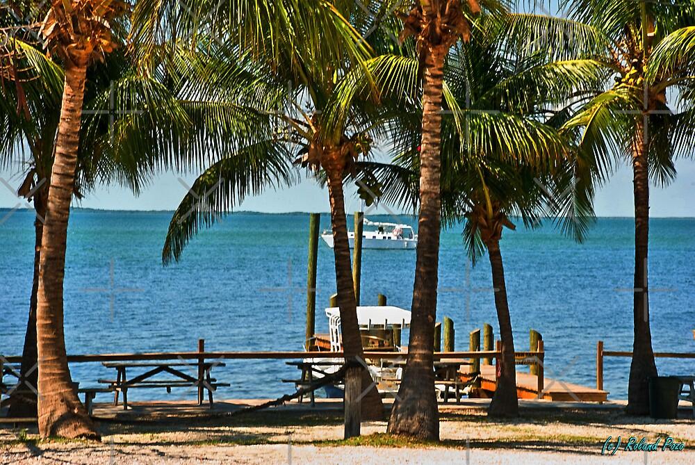Key Largo by photorolandi