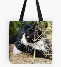 Aww!!..That One Got Away! - Spike Kitten - NZ Tote Bag