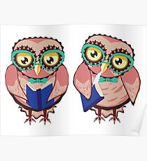 Curious Owl in Teal Glasses Poster