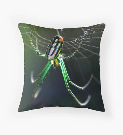 orchard orbweaver 3 Throw Pillow