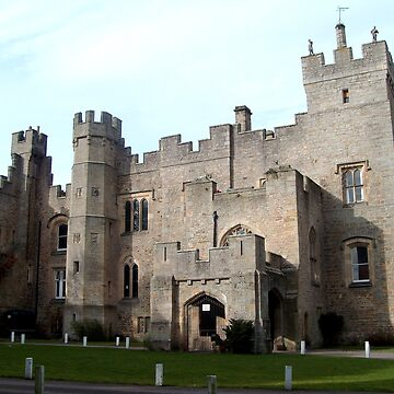 Witton Castle from the front by hilarydougill