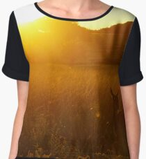 Deer at Ricmond Park, London Chiffon Top