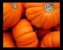 pumpkin 01 by Kittin