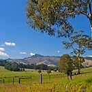 Mt Worth in Gippsland, Victoria by johnrf