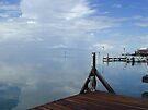 Laguna Madre by Cathy Jones
