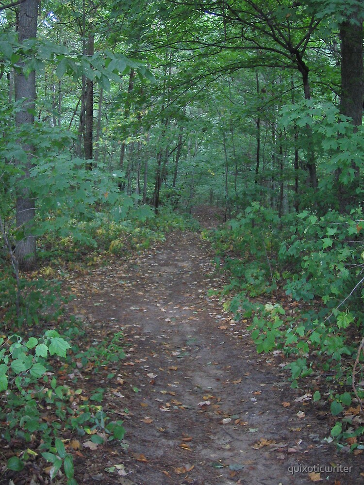 Your Path by quixoticwriter