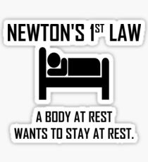 Newton's First Law- Funny Physics Joke Sticker