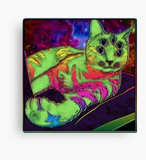 Space kitty Canvas Print