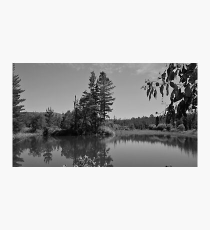 Narbethong Photographic Print