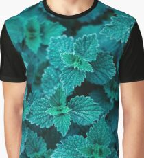 Cold Green Graphic T-Shirt