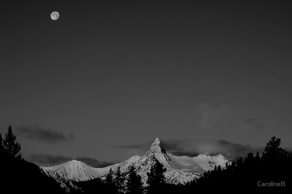 Wintery dream  by CarolineB