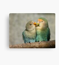 Oh!! Come On Give Me A Kiss..-Lovebirds - NZ Queenspark Canvas Print