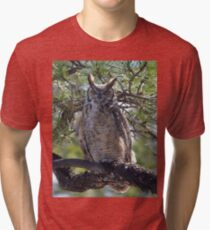 Great Horned Owl Perched in the Tree Tri-blend T-Shirt