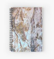 Rock Etchings Spiral Notebook