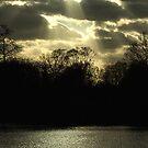 sunbreak by dee850