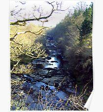 Lanarkshire Burn Poster