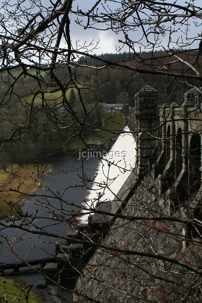 Dam Through The Trees by jcjimages
