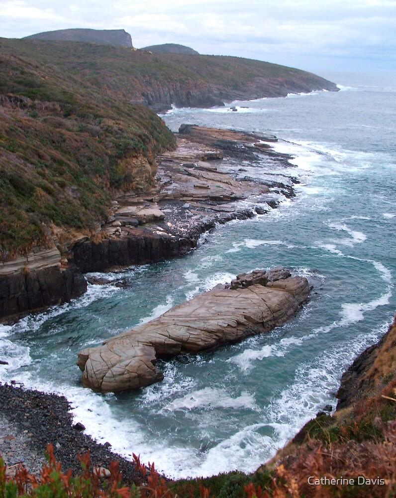Wild Ocean by Catherine Davis