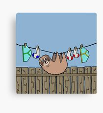 Washing Line Sloth  Canvas Print