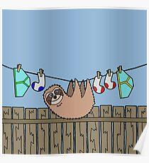 Washing Line Sloth  Poster