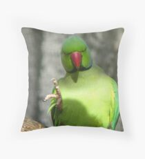 Miss, Miss, I know The Answer! - Ring Neck Parrot - NZ Queenspark Throw Pillow