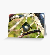 Do I look Like Happy Feet The Penguin? - Silver-Eye - NZ Greeting Card