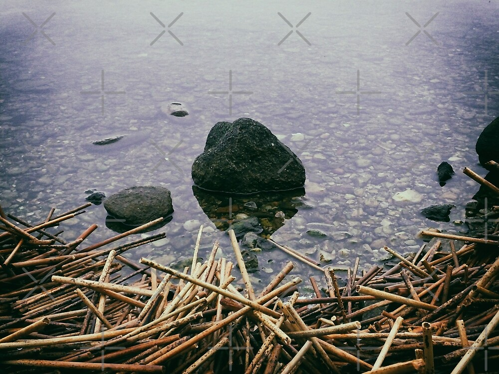 Sticks And Stones by Karen Stahlros