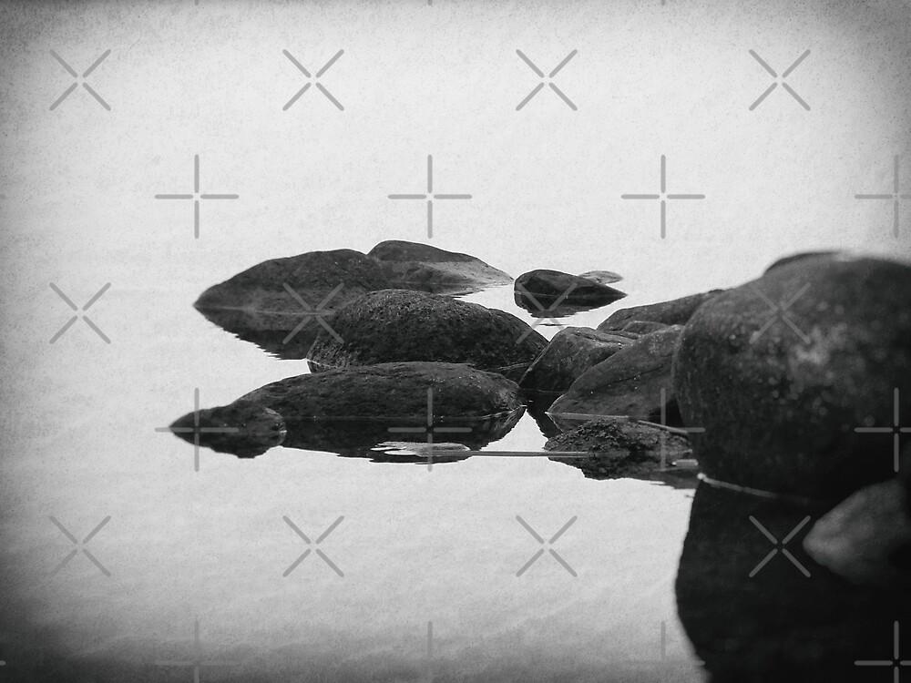 Solitude  by Karen Stahlros