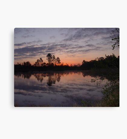 Morning on Bear Creek Canvas Print