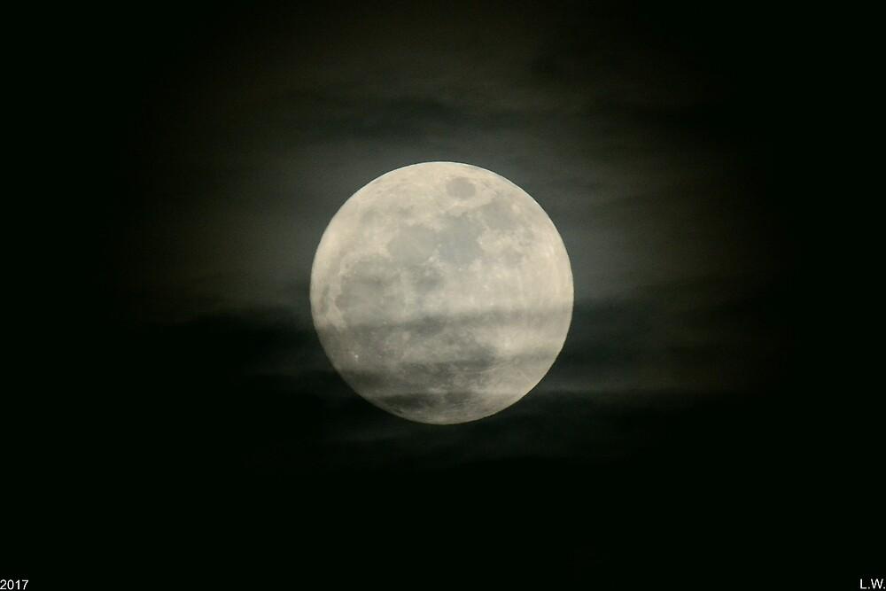 Full Moon by LisaWootenPhoto