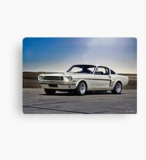 1966 Shelby Mustang GT 'Sheeps Clothing' I Canvas Print